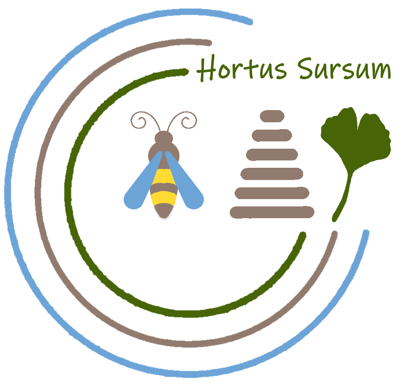 HortuslogoTransparent
