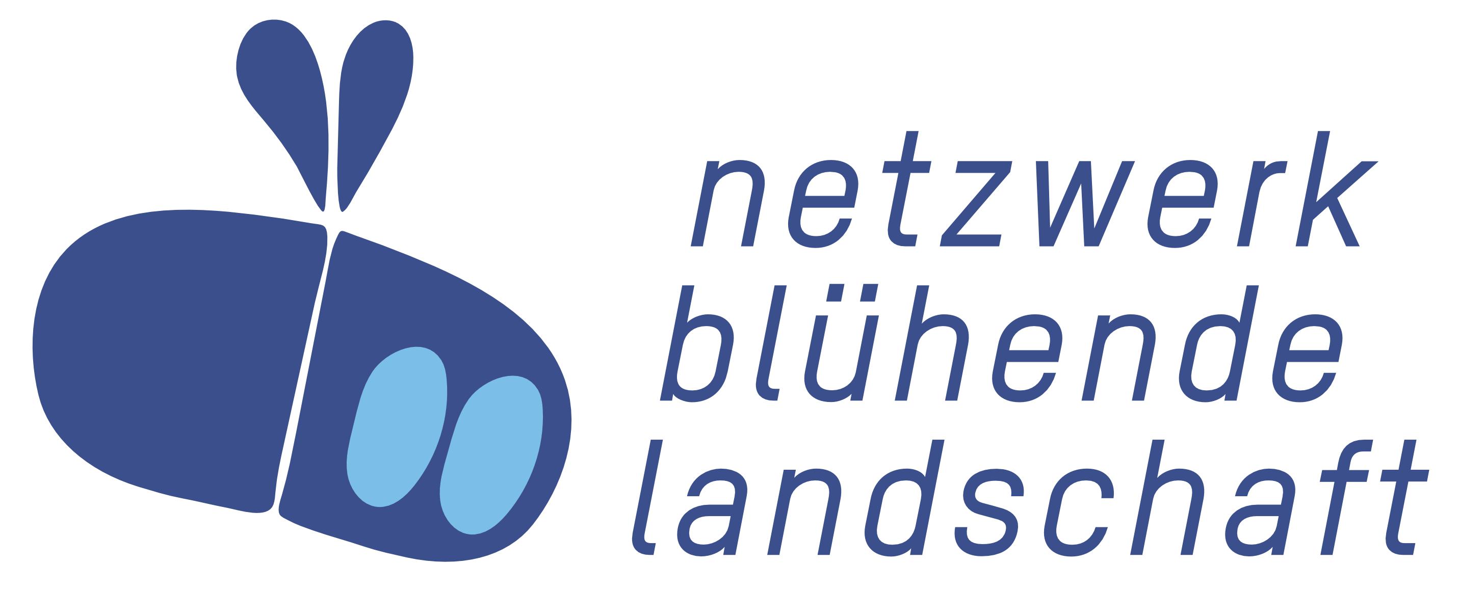 NBL-Logo 2019 Blau quer